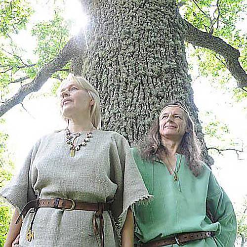Folk band DELVE